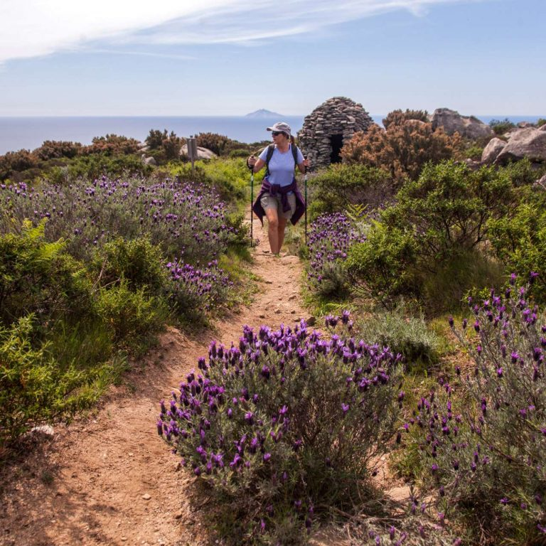 turismo isola d'Elba antichi caprili elbani
