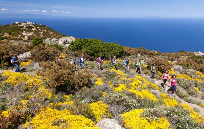 Isola d'Elba - Alla scoperta della GTE, la Grande Traversata Elbana