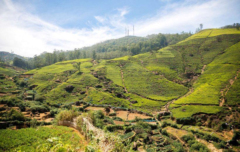 Sri Lanka - Natura, cultura e solidarietà