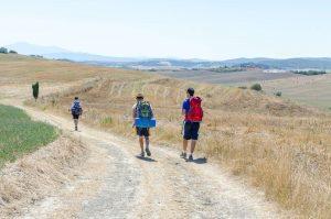 Trekking sulla Via Francigena