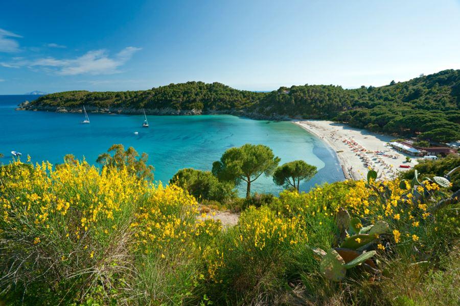 Spiaggia di Fetovaia cosa vedere all'isola d'elba