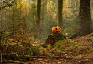Halloween all'Elba tra castagneti e castelli